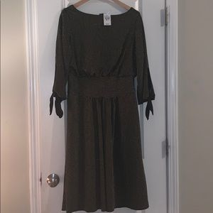NWT! Black and gold striped dress